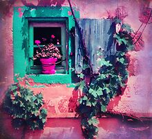 THE OLD FLOWERPOT by ♛ VIAINA
