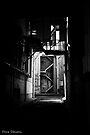 Dark Alley  by Pene Stevens