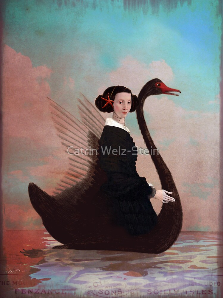 Black swan by Catrin Welz-Stein