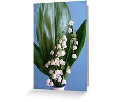 Will be almost spring??? Greeting Card