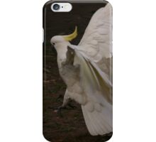 Landing iPhone Case/Skin