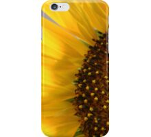 Sun Petals 2 iPhone Case/Skin