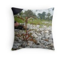 Interesting Little Plant - Andrew Throw Pillow