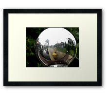 Fish Eye - Peter Jackson Framed Print