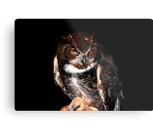 ET the Great Horned Owl Metal Print
