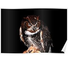 ET the Great Horned Owl Poster