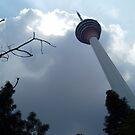High Tower - Zaw Rein by EveryoneHasHope