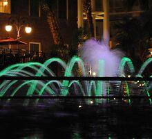 Amazing Fountain by Brittney Garland