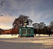 A Golden Weston Park by Mat Robinson