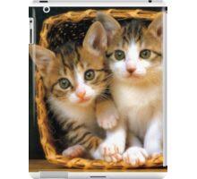 Basket full of love iPad Case/Skin
