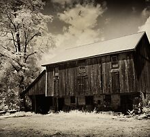 150 years old & still standing by ©  Paul W. Faust