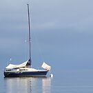 Dead Calm by Rick Playle