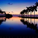 Anticipating Sunrise - Deering Estate at Cutler, Miami Dade by Ali Zaidi