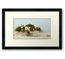 Monahans White Sand Hills ~ Desert Life ~ 3 Framed Print