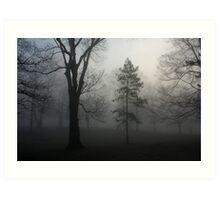 Trees in the Fog Art Print