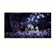 Infrared Snowdrops Art Print