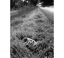 Worn Out Shoe Photographic Print