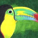 Toucan by Rhonda Blais