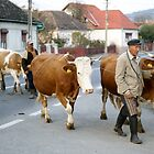 Romanian Farmer by Slaughter58