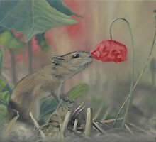 The Mouse and the Poppy by Wojciech Pater