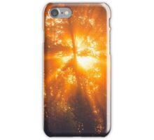 Sunbeams through tree in morning fog iPhone Case/Skin