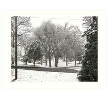 Feb. 19 2012 Snowstorm 2 Art Print