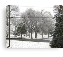 Feb. 19 2012 Snowstorm 2 Canvas Print
