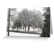 Feb. 19 2012 Snowstorm 2 Greeting Card