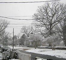 Feb. 19 2012 Snowstorm 3 by dge357