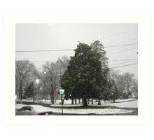 Feb. 19 2012 Snowstorm 7 Art Print