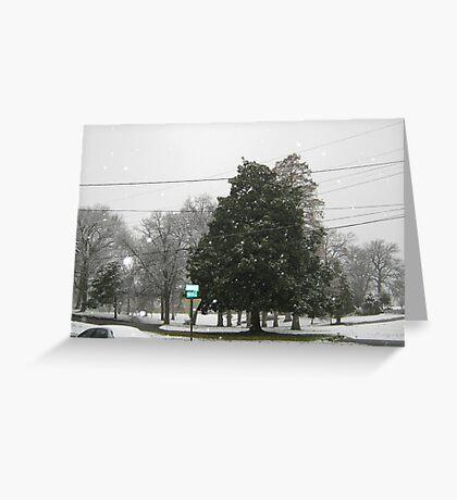 Feb. 19 2012 Snowstorm 7 Greeting Card