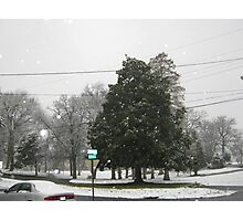 Feb. 19 2012 Snowstorm 7 Photographic Print