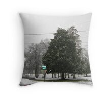 Feb. 19 2012 Snowstorm 7 Throw Pillow