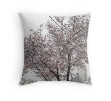 Feb. 19 2012 Snowstorm 10 Throw Pillow
