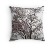 Feb. 19 2012 Snowstorm 11 Throw Pillow