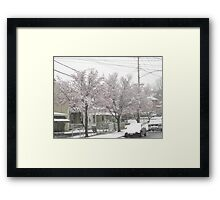 Feb. 19 2012 Snowstorm 12 Framed Print