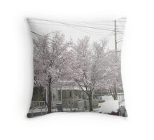 Feb. 19 2012 Snowstorm 12 Throw Pillow