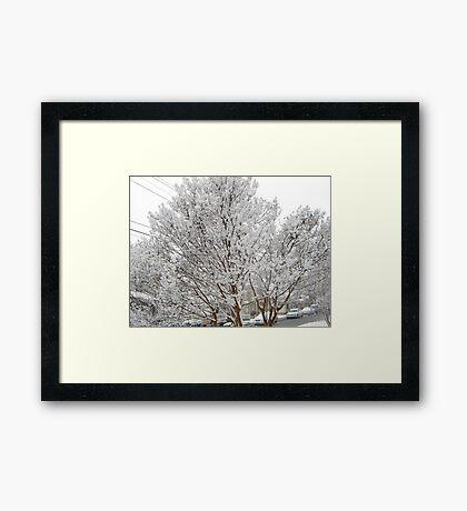 Feb. 19 2012 Snowstorm 13 Framed Print