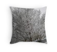 Feb. 19 2012 Snowstorm 14 Throw Pillow