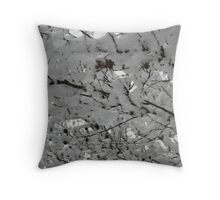 Feb. 19 2012 Snowstorm 15 Throw Pillow