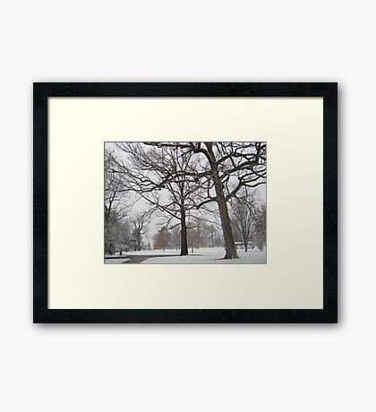 Feb. 19 2012 Snowstorm 19 Framed Print