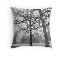Feb. 19 2012 Snowstorm 19 Throw Pillow