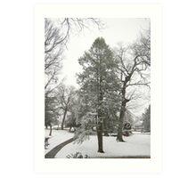 Feb. 19 2012 Snowstorm 20 Art Print