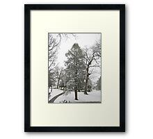 Feb. 19 2012 Snowstorm 20 Framed Print