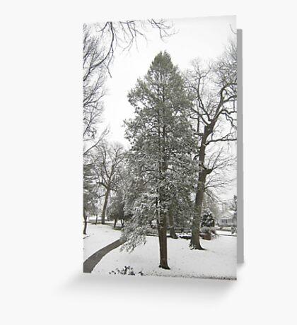 Feb. 19 2012 Snowstorm 20 Greeting Card