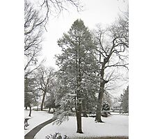 Feb. 19 2012 Snowstorm 20 Photographic Print