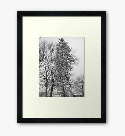 Feb. 19 2012 Snowstorm 21 Framed Print