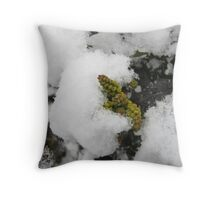 Feb. 19 2012 Snowstorm 22 Throw Pillow