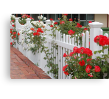 Roses On The Front Fence. Canvas Print