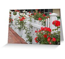 Roses On The Front Fence. Greeting Card